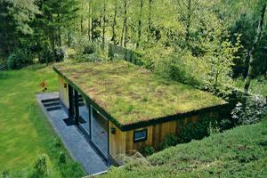 toit v g talis atelier 10 design am nagement de jardins. Black Bedroom Furniture Sets. Home Design Ideas
